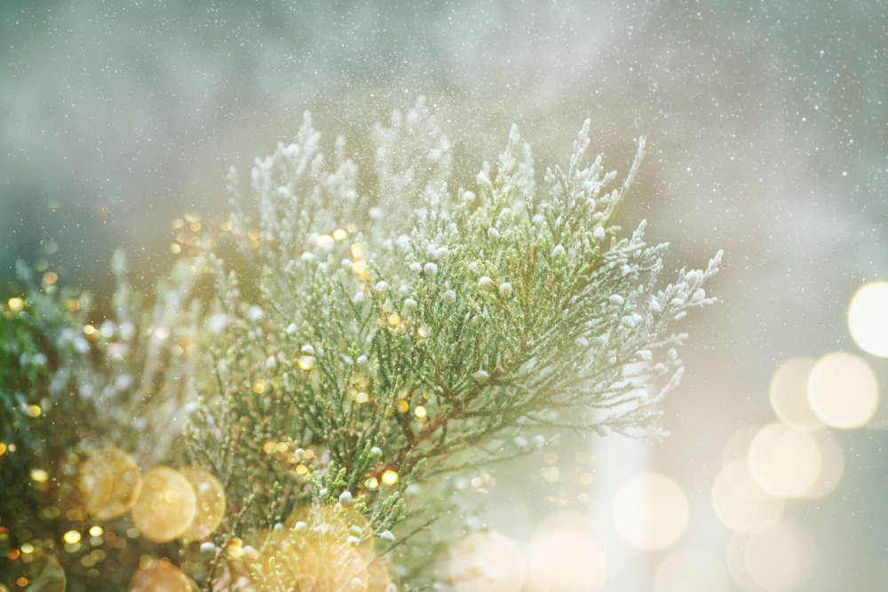 Garten im Winter Gartenbeleuchtung - Bartos Hagen